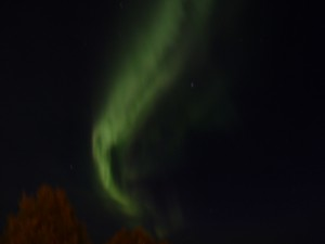 Nordlys over Harstad